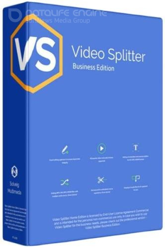 SolveigMM Video Splitter 7.3.2001.30 Business Edition Final + Portable
