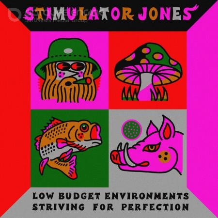 Stimulator Jones - Low Budget Environments Striving For Perfection (2021)